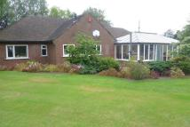 Middle Lane Bungalow for sale
