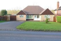 Detached Bungalow for sale in Congleton Road, Biddulph...