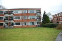 Flat to rent in Greenacres...