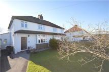 South Dene semi detached house to rent