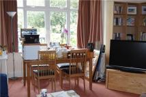 Meridian Road Flat to rent