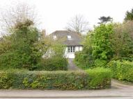 Bungalow for sale in Bath Road, Worcester...
