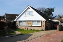 Sycamore Close Detached Bungalow to rent