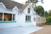 Detached house in Hollington Park Road...