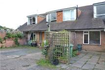 property to rent in Yew Tree Farm, Wheel Lane, Westfield, HASTINGS, East Sussex
