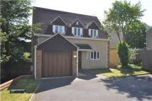 Detached house to rent in Fairfax Road, Cowley, OX4