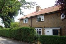 Terraced house to rent in Huntingfield Road...