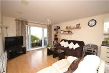 1 bed Flat to rent in Buckland House...