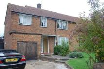 4 bed semi detached property to rent in NOAK HILL