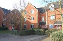 2 bed Flat to rent in Campion Close, RUSH GREEN