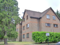 property to rent in Winston Rose Court