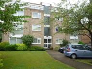 Northview Flat to rent