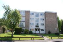 1 bedroom Flat to rent in Sycamore Manor...