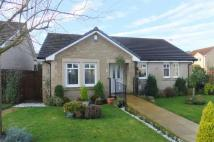 Detached Bungalow in Hillview...