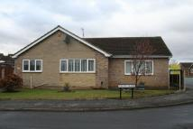 3 bed Detached Bungalow for sale in Ascot Close, Mexborough
