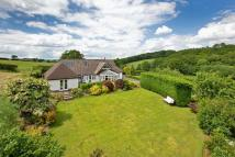 Detached property in NEAR TEDBURN ST MARY