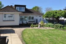 4 bedroom Detached house for sale in ALPHINGTON