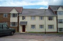 2 bedroom Flat to rent in Westacott Meadow...