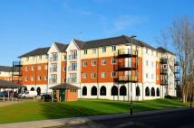 2 bed Apartment in Pettacre Close...