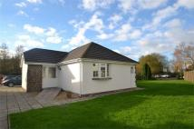 2 bed Terraced Bungalow in SWIMBRIDGE, Barnstaple...