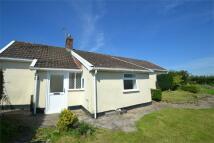 2 bed Detached Bungalow to rent in Umberleigh, Devon