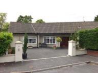 3 bedroom Bungalow to rent in Hale 3 beds (Westfields)