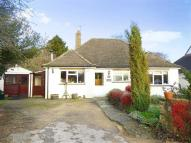 Detached Bungalow for sale in The Pound, Bloxham