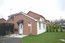 4 bed semi detached house for sale in Festival Park/Rosewood...