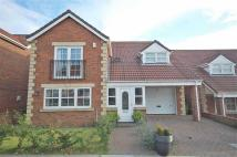 Birtley Detached property for sale