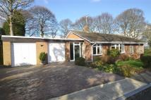 3 bed Detached Bungalow for sale in Springwell Village