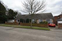 South Detached Bungalow for sale