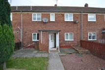2 bed semi detached home for sale in Kibblesworth