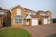 4 bedroom Detached house in Meadow rise
