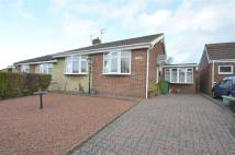 Semi-Detached Bungalow to rent in Hazelwood Close...