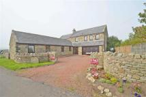Detached house for sale in Beadnell Northumberland