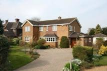 5 bedroom Detached house in Gore Tree Road...
