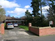 Cornmoor Road Detached Bungalow for sale