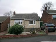 3 bed Detached Bungalow to rent in Church Rise, Whickham...