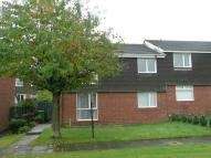 Flat to rent in Kingsway, Sunniside...