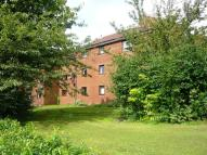 Flat to rent in Canon Lynch Court...