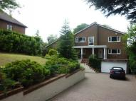 Detached property to rent in Heathfield The Avenue...
