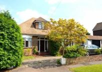 Bungalow to rent in Woodlands Way,  Ashtead...