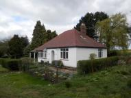 Detached Bungalow to rent in Tamworth Road...