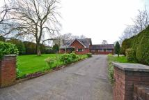 Bungalow for sale in Rose Villa, Moss Lane...