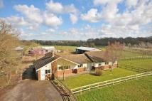 Farm House for sale in Bethersden, TN26