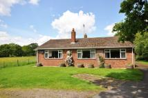 3 bedroom Bungalow in Shadoxhurst, TN26