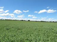 North Ockendon Land
