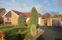 Detached Bungalow for sale in Hooton Road, Willaston
