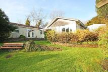 4 bedroom Bungalow in Rattery