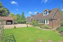4 bedroom Detached Bungalow for sale in Plaistow Road, Ifold...